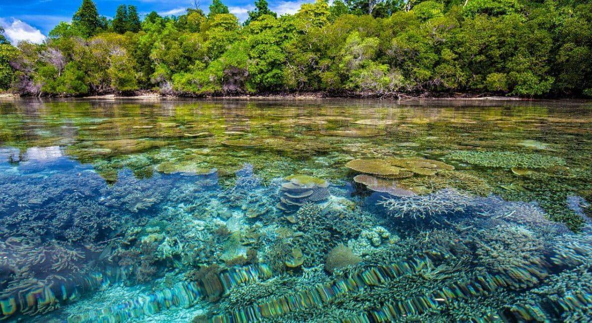 Indonesia Views & Travel Info