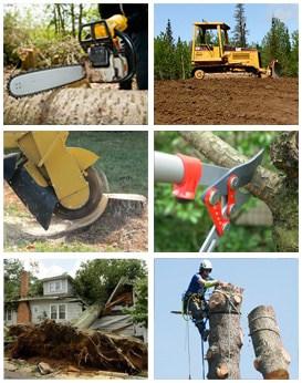 Tree Removal Services Alabama Ultimate Tree Service LLC 1