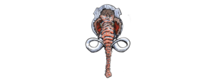 logo website2 300x113