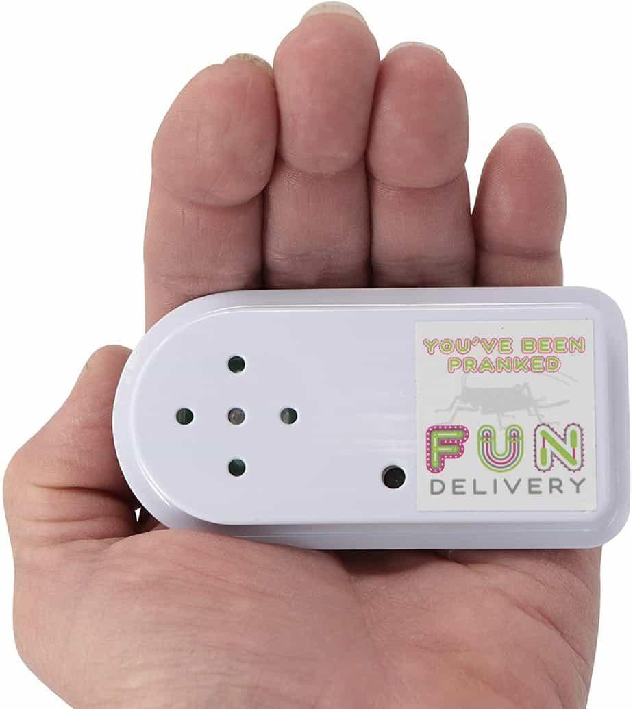 Prank Hidden Sound Devices