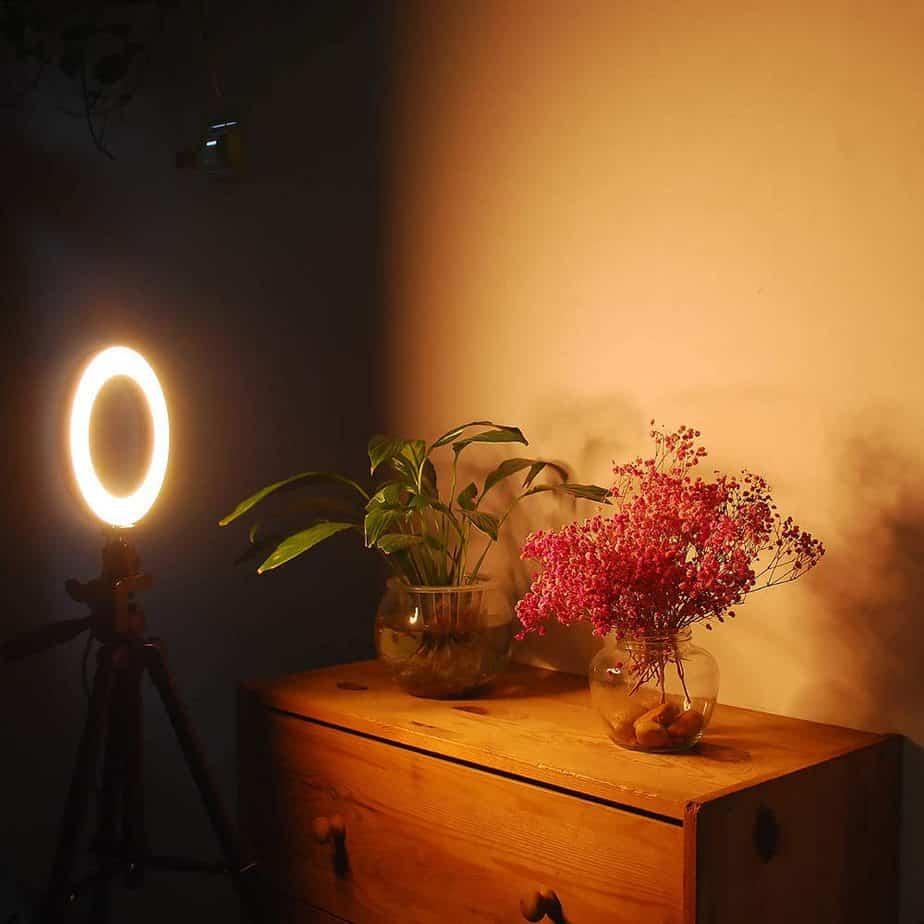 Flattering Video Chat & Meeting Ring Light