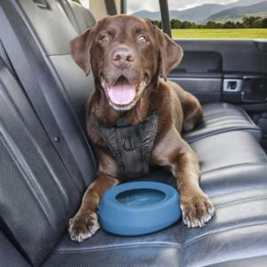 Kurgo No-Spill Travel Dog Water Bowl