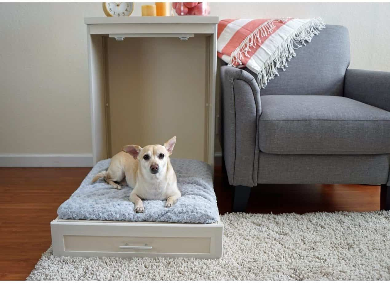 Murphy Style Dog Bed