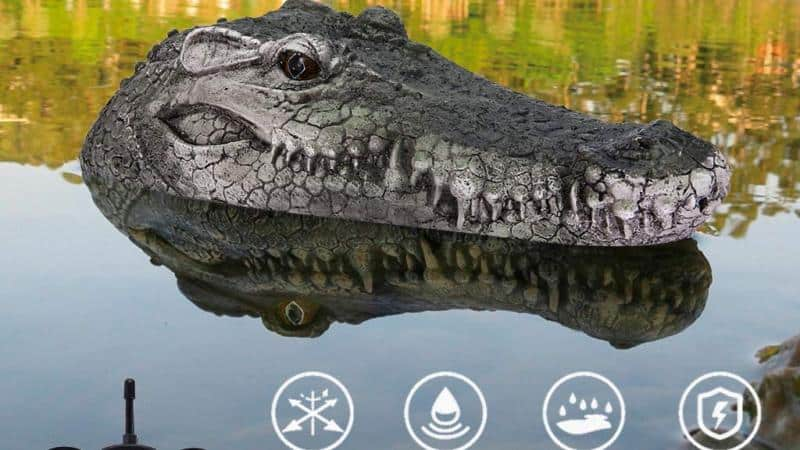 Remote Control Crocodile Head