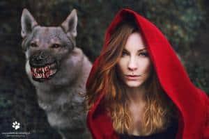 Werewolf Dog Muzzle - Gift For Large Dog Owners