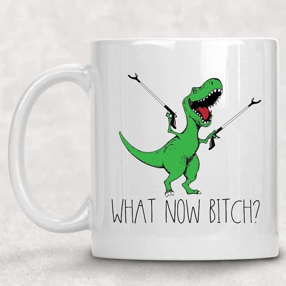 What now, Bitch Funny Adult T-Rex Dinosaur Coffee Mug