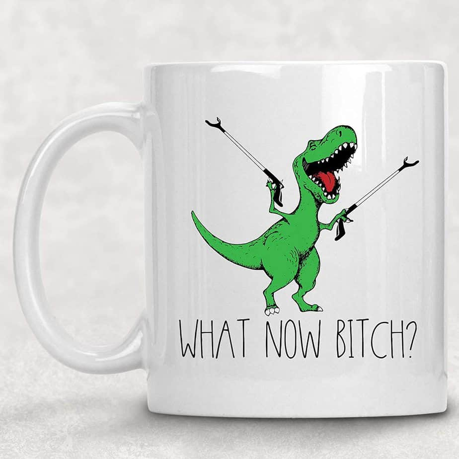 What now, Bitch Funny Adult T-Rex Dinosaur Coffee Mug