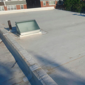 roof th pic 04