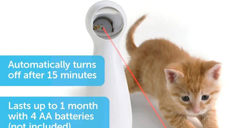 PetSafe Bolt Automatic Interactive Laser Cat Toy