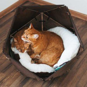 Geometric Wooden Pet Bed Kittens