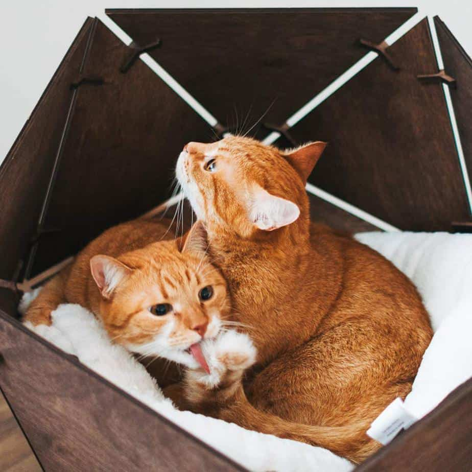 Geometric Wooden Pet Bed