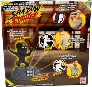 Shadow Fighter Game