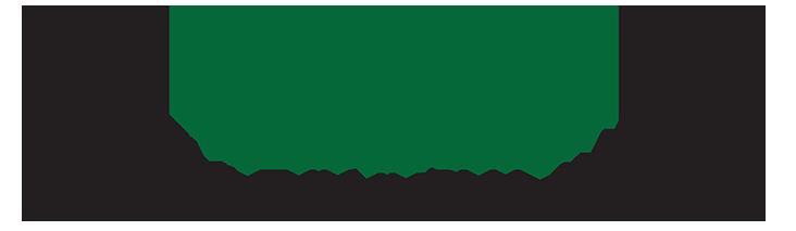 Lifestyle Injury Logo 2019 small