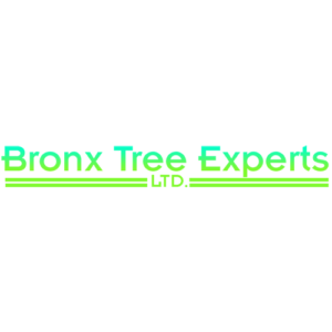 Bronx Tree Pro Tree Removal Cutting Trimming Service Logo 1 300x300