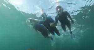 Easybreath Snorkeling Mask & More Cool Beach Stuff