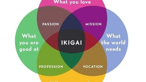 Stress Relief Tool – Visualize Your Ikigai