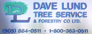 DaveLundLogoClear1 1 300x113