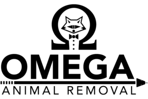omega logo 300x200